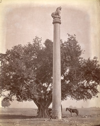 Side view of the Asokan Edict Pillar, Lauriya Nandangarh, Champaran District